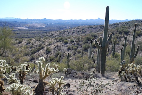 View of Wickenburg